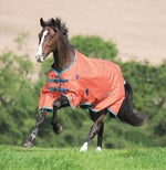 Light Weight Horse Blankets - Riding