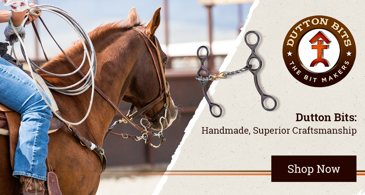 Horse Tack Western Horse Gear Supplies Riding Warehouse