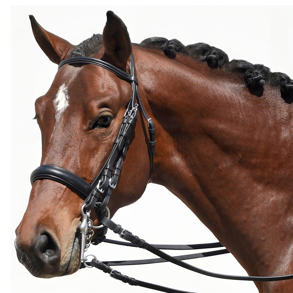 Bobby S Tack Padded Dressage Weymouth Double Bridle