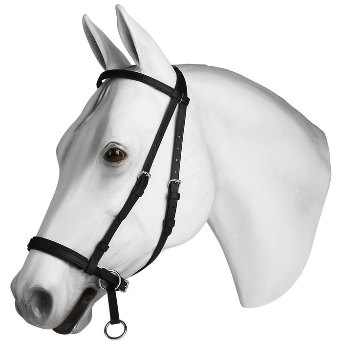 Dr  Cook Beta BioThane Bitless Bridle Headstall - Riding