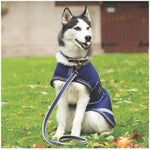 Horseware Amigo Waterproof Dog Coat Jacket/Blanket