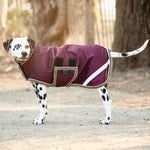 Horseware Amigo Waterproof Dog Coat Jacket/Blanket