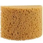 Honeycomb Body & Bath Grooming Sponge