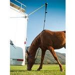 EasyCare HiTie Horse Trailer Tie System