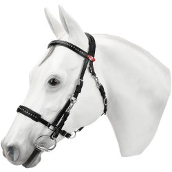 Halter Bridle Combinations